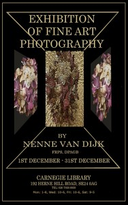 Exhibition (December 14) Nenne Van Dijk